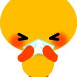 鼻が乾燥する「ドライノーズ」の原因と対策!